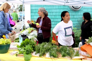 Lisa Sadleir-Hart, Maybelle Filler and Hilary Martin sell produce at the Sitka Farmers Market booth on July 18.