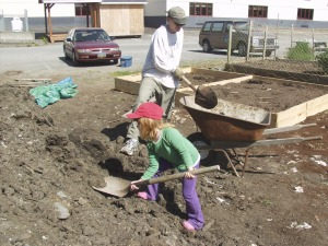 Doug Osborne and his daughter, Darby, shovel topsoil into a wheelbarrow while building the WISEGUYS men's health group's garden plot in May 2008 at the Blatchley Community Gardens