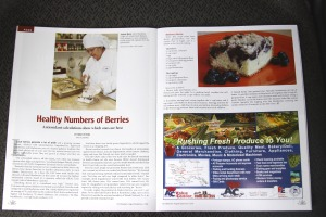 Screenshot of First Alaskans magazine article on healthy berries