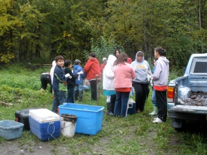 Potato pickers gather for the potato-picking party on Sept. 25 at the WISEGUYS potato patch in Klukwan