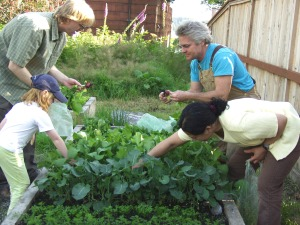 Darby Osborne, Doug Osborne, Kerry MacLane and Maybelle Filler pick radishes at St. Peter's Fellowship Farm before the first Sitka Farmers Market in 2008