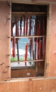Sockeye salmon hang in a smoker in preparation for the 2009 ANSWER Camp program