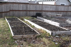 Barren garden beds wait to be prepared for planting at St. Peter's Fellowship Farm