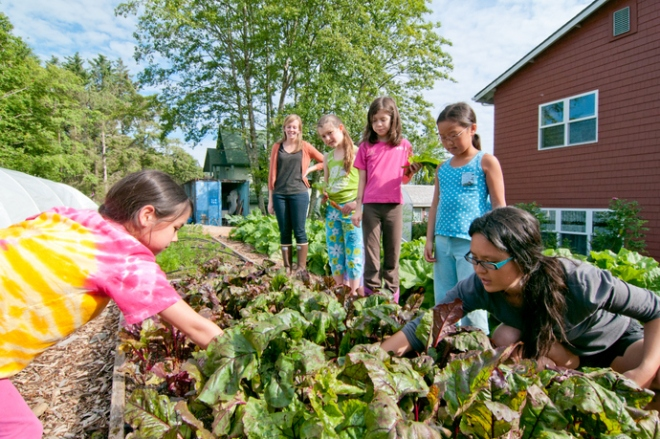 The Alaska Way of Life 4-H club gardens at St. Peter's Fellowship Farm in 2013. (Photo by Matthew Dolkas, courtesy of the Sitka Conservation Society)