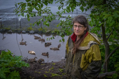 Lori Adams poses with some of the ducks she keeps to help keep slugs at bay at her Down-To-Earth U-Pick Garden. (Photo Courtesy of Sitka Conservation Society)