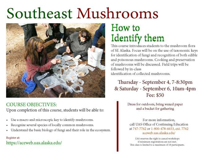 SE mushrooms Brochure 2014_Page_2