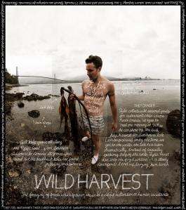 WildHarvest