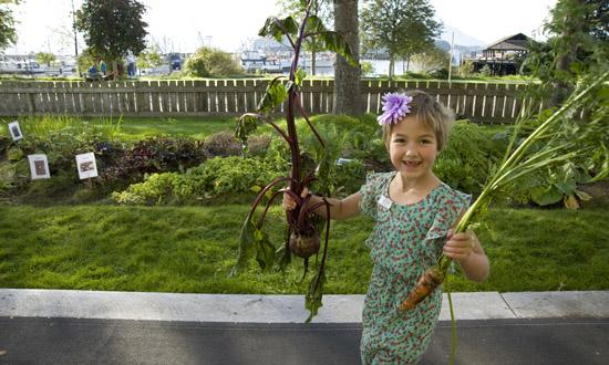 gardenharvest14ws