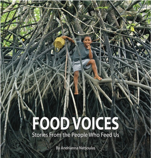 FoodVoicesCover