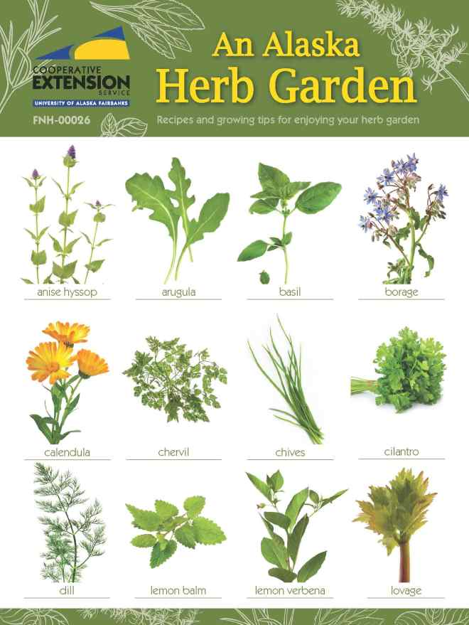 Herb-Book-cover_Page_1