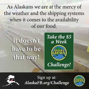 AlaskaGrown3_Graphic