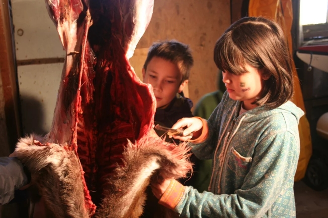 Participants in Sitka's Alaska Way Of Life 4-H program, aka the Sitka Spruce Tips 4-H program, learn how to skin and butcher a deer. (Photo courtesy of the Sitka Conservation Society/Sitka Spruce Tips 4-H program)